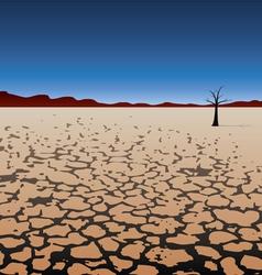 tree in dry desert vector image vector image