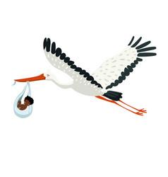 A stork carries a bundle with a bain its beak vector