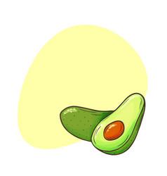avocado poster whole avocados sliced pieces cut vector image
