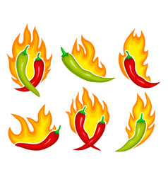 chili pepper on fire vector image