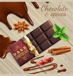 Chocolate and spices realistic vector