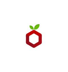 hexagon fruit logo icon design vector image