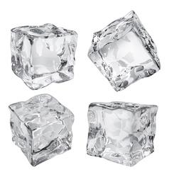 Ice cubes vector