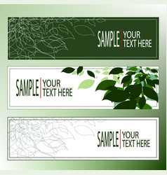 Natural leaf flow graphic template suitable vector