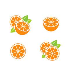 Orange fruit and cut oranges vector