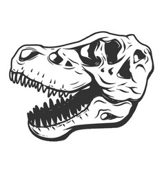 T-rex dinosaur skull isolated on white background vector