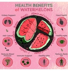 Watermelon Benefits 01 A vector image