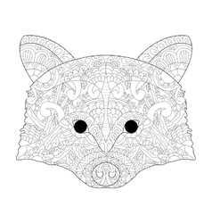 Head raccoon antistress coloring for adults vector image