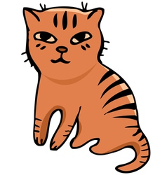 Tabby cat vector image vector image