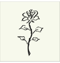 black rose on white background vector image