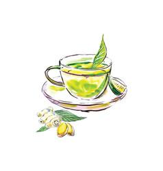 watercolor tea ginger and lemon vector image