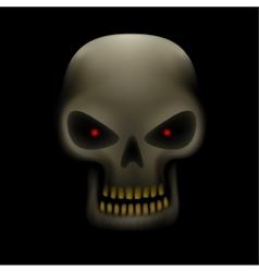 Skull in the dark vector