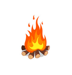 cartoon image bonfire isolated icon vector image
