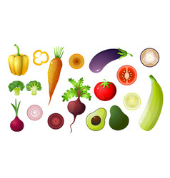 colored vegetables set isolated on white vector image