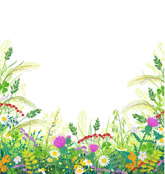 colorful frame with summer meadow plants vector image