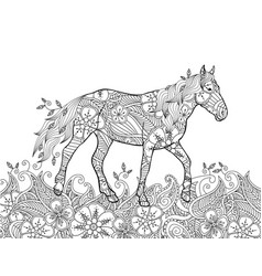 coloring page in zentangle inspired doodle style vector image
