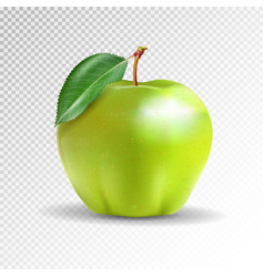 Perfect fresh green apple isolated on transparent vector