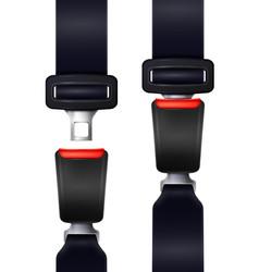 realistic seat belts set vector image