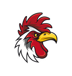 rooster head isolated white cock vector image