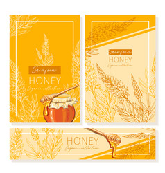 Sainfoin honey print template yellow and orange vector