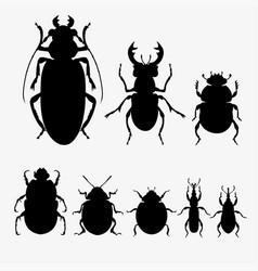 set of beetles vector image
