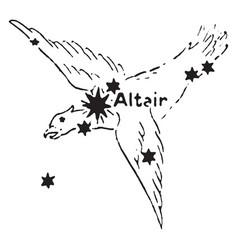 the eagle vintage vector image