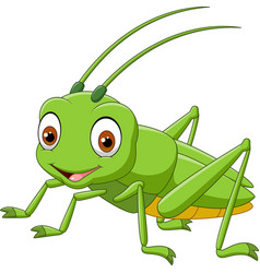Cartoon happy grasshopper vector