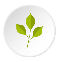 Green cherry leaves icon circle vector