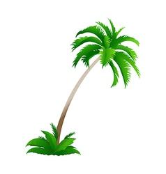icon palmtree vector image