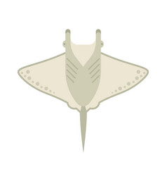manta ray or stingray vector image