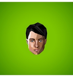 with caucasian man face in low-polygonal style vector image