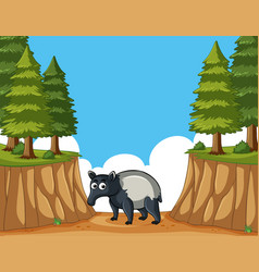 Anteater in the mountain vector