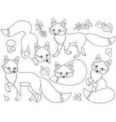 Black And White Foxes Set vector image