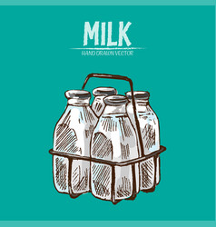 digital detailed line art milk vector image
