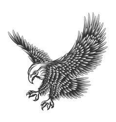 Eagle engraving vector