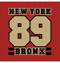 New York striker bronx the best in the team vector image