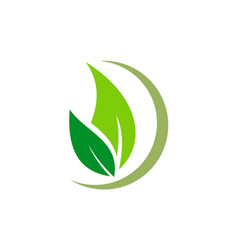 Organic green leaf natural logo vector