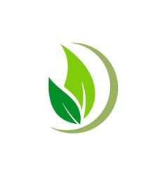 Organic green leaf natural logo vector