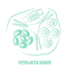 Plankton phytoplankton outline vector