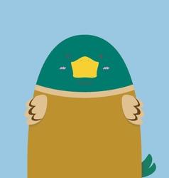 cute big fat green head duck vector image