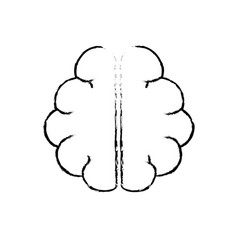 Figure anatomy brain to imagination and memory vector