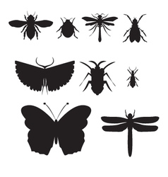 black insect icon set vector image