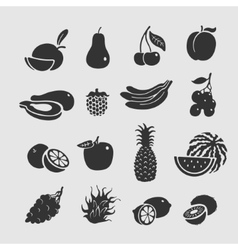 Symbol Set Fruit vector image