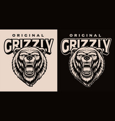 a black and white a grizzly head vector image