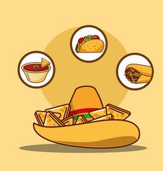 Delicious hat nacho sauce taco and burrito vector