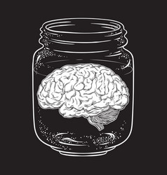 human brain in glass jar isolated sticker print vector image