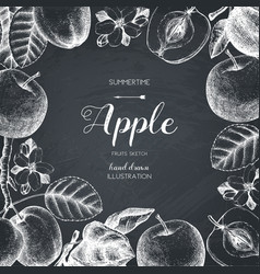 Vintage card design with apple fruits sketch vector