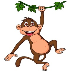 Cute monkey hanging vector image