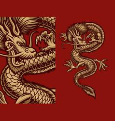 A an asian dragon vector