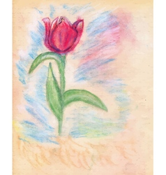 Chalk Drawn Tulip2 vector